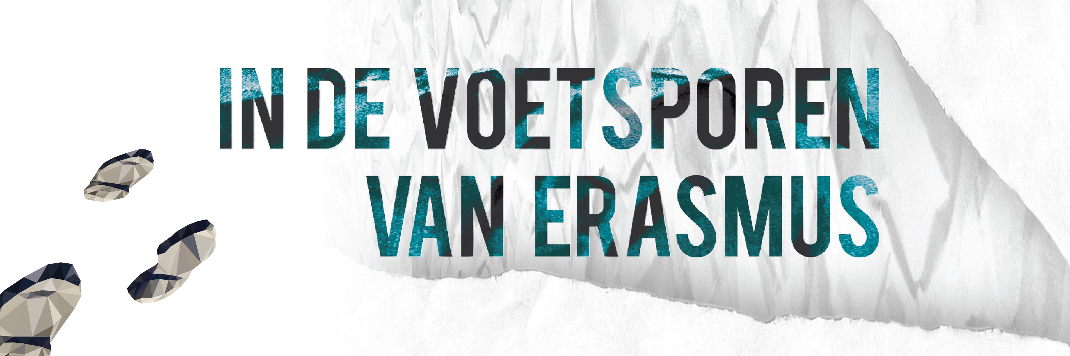 14 Banner Erasmus
